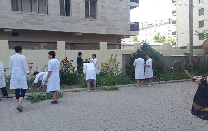 Врачи центра семейной медицины № 3 вместо приема пациентов отправились на уборку прилегающей территории