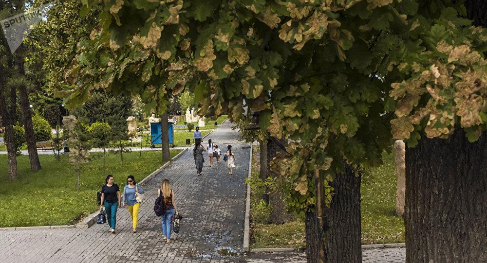 Горожане гуляют по дубовому парку в Бишкеке. Архивное фото