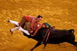 Бой с быком на арене Campo Pequeno в Лиссабоне