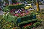 В Бишкеке появились необычные цветочные клумбы