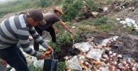 Ысык-Көл облусунун Түп районундагы Корумду айылынын тургундары ичимдиктен баш тартып, буга чейин дүкөндөрдө сатылып жаткан арактарды талаага төгүштү