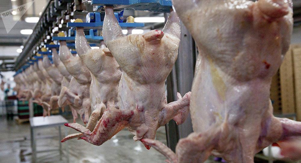 В цехе убоя и разделки мяса птицы. Архивное фото