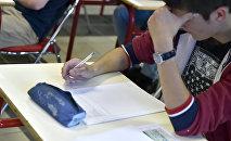 Ученик во время урока в школе. Архивное фото