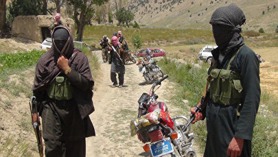 Талибан террордук уюмунун мүчөлөрү. Архив