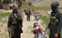Члены радикального движения Талибан Афганистана со своим оружием в районе Ахмад-Аба на окраине города Гардес. Архивное фото
