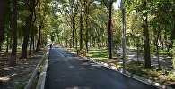 Юлиус Фучик атындагы парк. Архивдик сүрөт