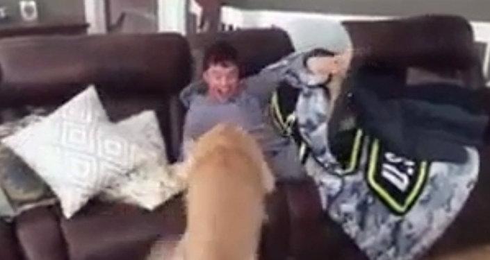 Это видео растрогает даже самых черствых: неожиданная встреча пса и хозяина