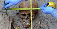 Археолог измеряет череп во время работ. Архивное фото