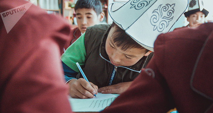 Школьник во время урока. Архивное фото