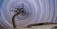 Шорт-лист фотоконкурса Insight Astronomy Photographer of the Year 2018
