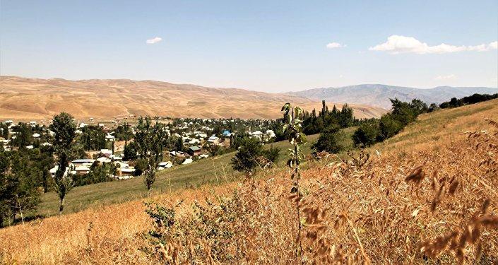 В трех селах Ошской области, где существует риск схода оползней, посадили 9 тысяч саженцев фруктовых деревьев