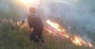 Сотрудник МЧС во время тушения пожара на приграничной с Казахстаном горе Алмалуу в Таласской области