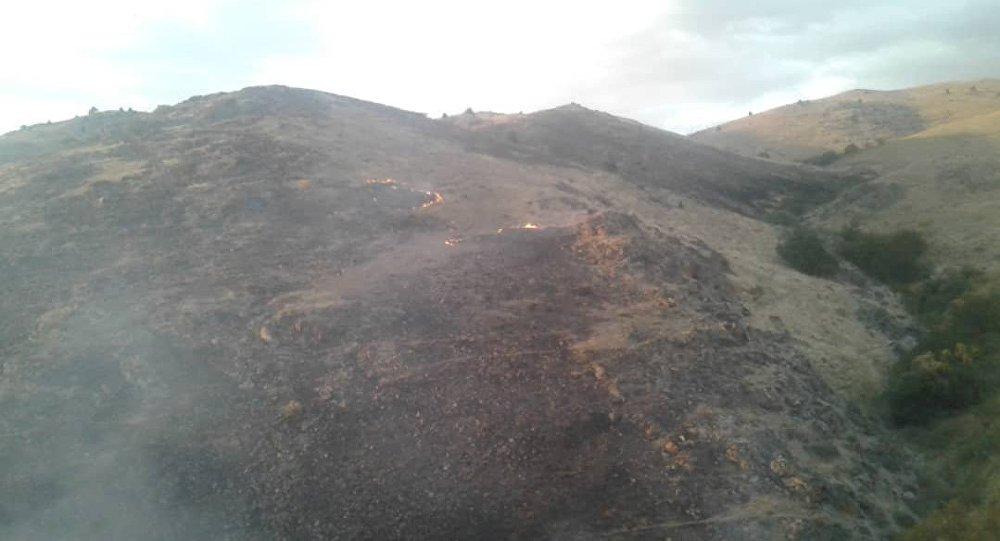 Талас облусунун Алмалуу тоосуна жакын жердеги Кара-Арча токоюндагы өрт толугу менен өчүрүлдү