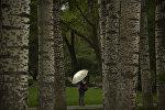 Женщина c зонтом, гуляет по общественному парку во время ливневого дождя. Архивное фото