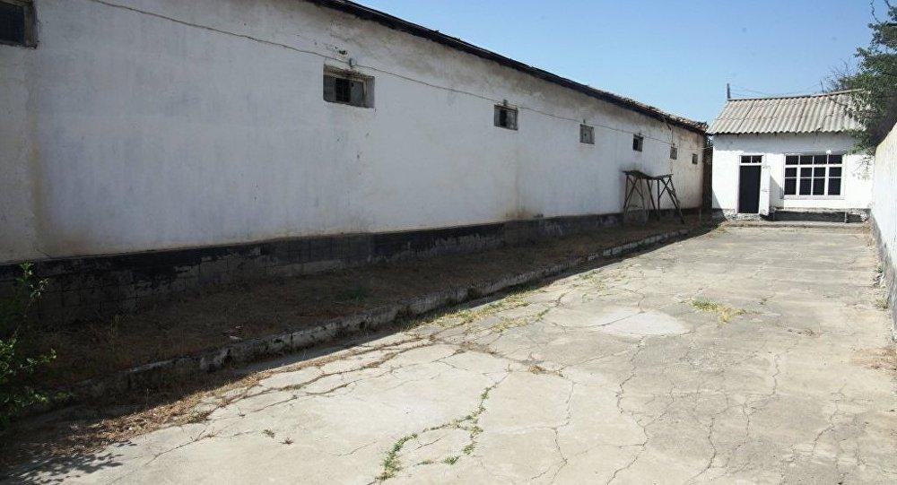 Ош ШИИБдин кабыл алып бөлүштүрүү бөлүмүнүнүн имараты толугу менен реконструкцияланат