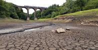 Засуха в Англии