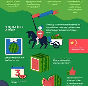 Интересные факты об арбузе, которые вы могли не знать — инфографика