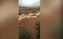 Сильный селевой поток обрушился на дорогу на Иссык-Куле — видео очевидца