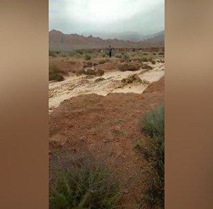 Албууттанган сел. Кажы-Сайдын жанындагы жол жараксыз болуп калган видео