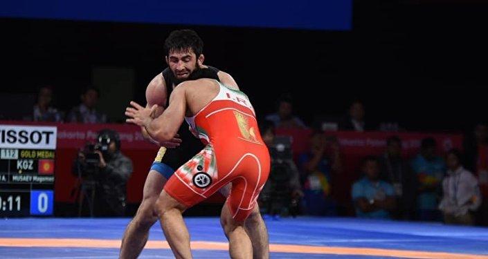 Медалга жалгыз Магомед Мусаев (97 кг) ээ болуп, күмүш байгеге татыды