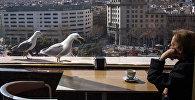 Города мира. Барселона. Архивное фото