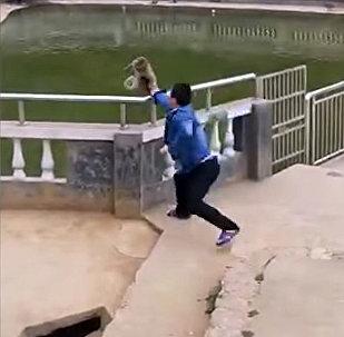 Макака отомстила туристу за подлую выходку — поучительное видео