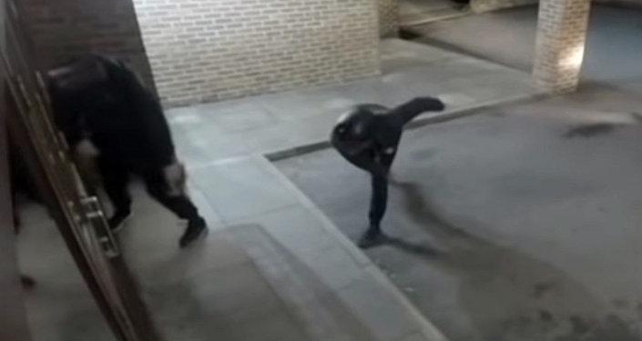 Вор бросил кирпич в витрину, а попал в голову другу, — видео