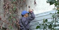 Один из самых криминальных районов Бишкека оснащают камерами. Видео