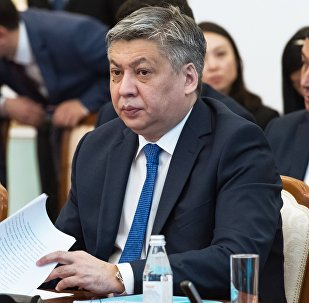 Архивное фото министра иностранных дел КР Эрлана Абдылдаева