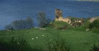 Лох-Несс, озеро в Шотландии. Архивное фото