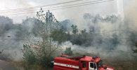 Пожар возле парка имени Ататюрка на юге Бишкека