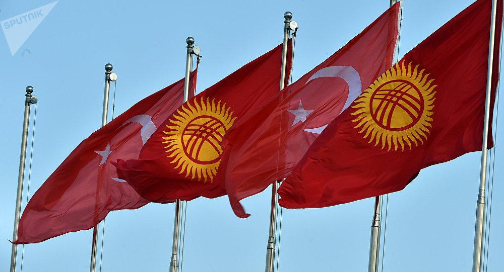 Флаги Турции и Кыргызстана. Архивное фото