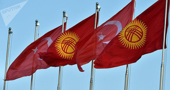 Кыргызстандын жана Түркиянын желектери. Архив