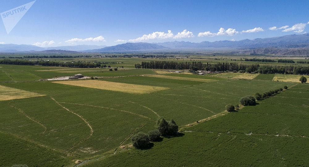 Плодородная земля в Иссык-Кульской области. Архивное фото