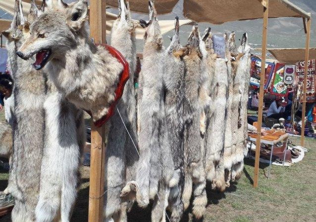 В Кырчыне можно приобрести волчьи шкуры.