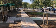Открытие новой аллеи на пересечении улиц Байтик Баатыра и Суеркулова в Бишкеке