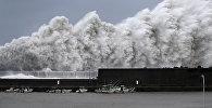Тайфун Джеби в Японии. Архивное фото