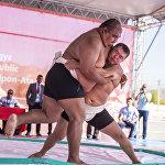Впервые на Играх кочевников боролись сумоисты. Кыргызстанец Алмаз Эргешов победил борцов из Узбекистана и Индии, но затем уступил двум россиянам и занял пятое место.