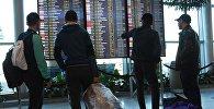 Пассажиры у информационного табло в аэропорту. Архивное фото
