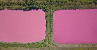 Розовые озера под Самарой