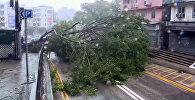Супертайфун крушит огромные краны и сносит людей в Китае — видеоподборка