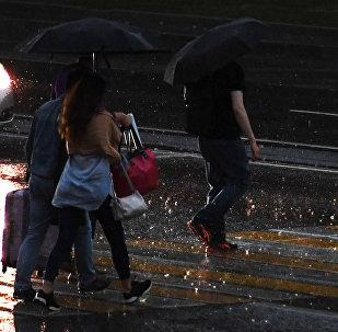 Прохожие переходят дорогу во время дождя. Архивное фото