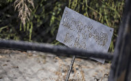 Места захоронения животных больных сибирской язвой. Архивное фото