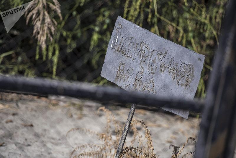 Места захоронения животных больных сибирской язвой