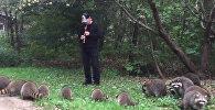 Житель Нью-Йорка Эдди Лоуренс научился выманивать енотов из леса с помощью игры на флейте