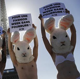 Акция активистов за этическое обращение с животными в Париже