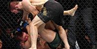 Турнир UFC 229 в Лас-Вегасе. Хабиб Нурмагомедов — Конор Макгрегор
