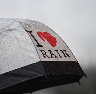 Зонт с надписью Я люблю дождь. Архивное фото