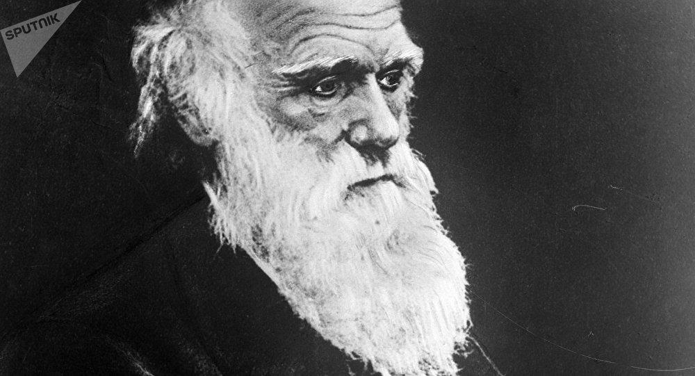Чарльз Роберт Дарвин. Архив
