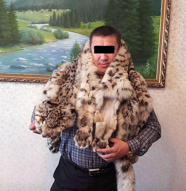 Сотрудники Государственного агентства охраны окружающей среды и лесного хозяйства (ГАООСиЛХ) нашли мужчину, который позировал для фото со шкурой снежного барса